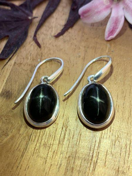 Star diopside Earrings