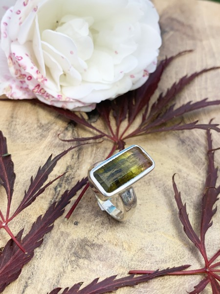 Top Watermelon Tourmaline Ring - 53,5