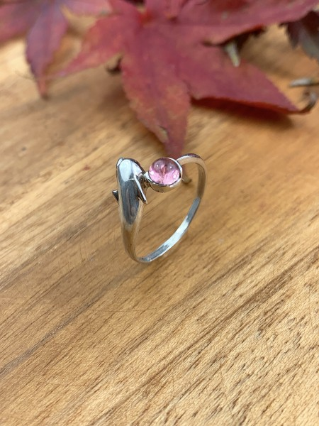 Dolphin Ring with Garnet Ring